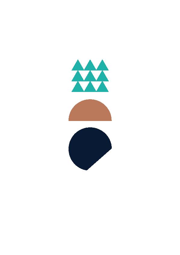 LogoFDSB
